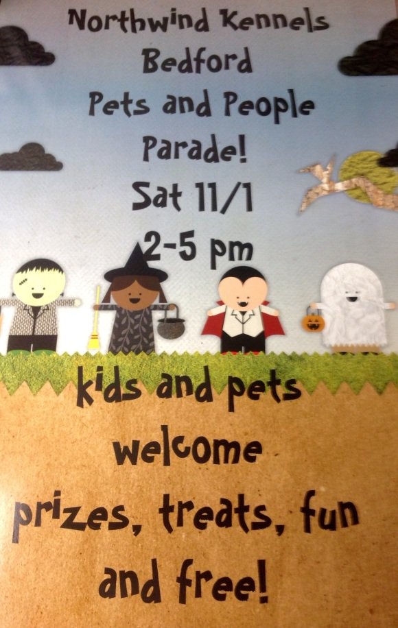 Our Annual People & Pet Halloween Parade