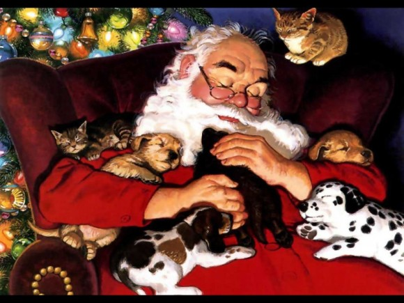 Common holiday pet hazards